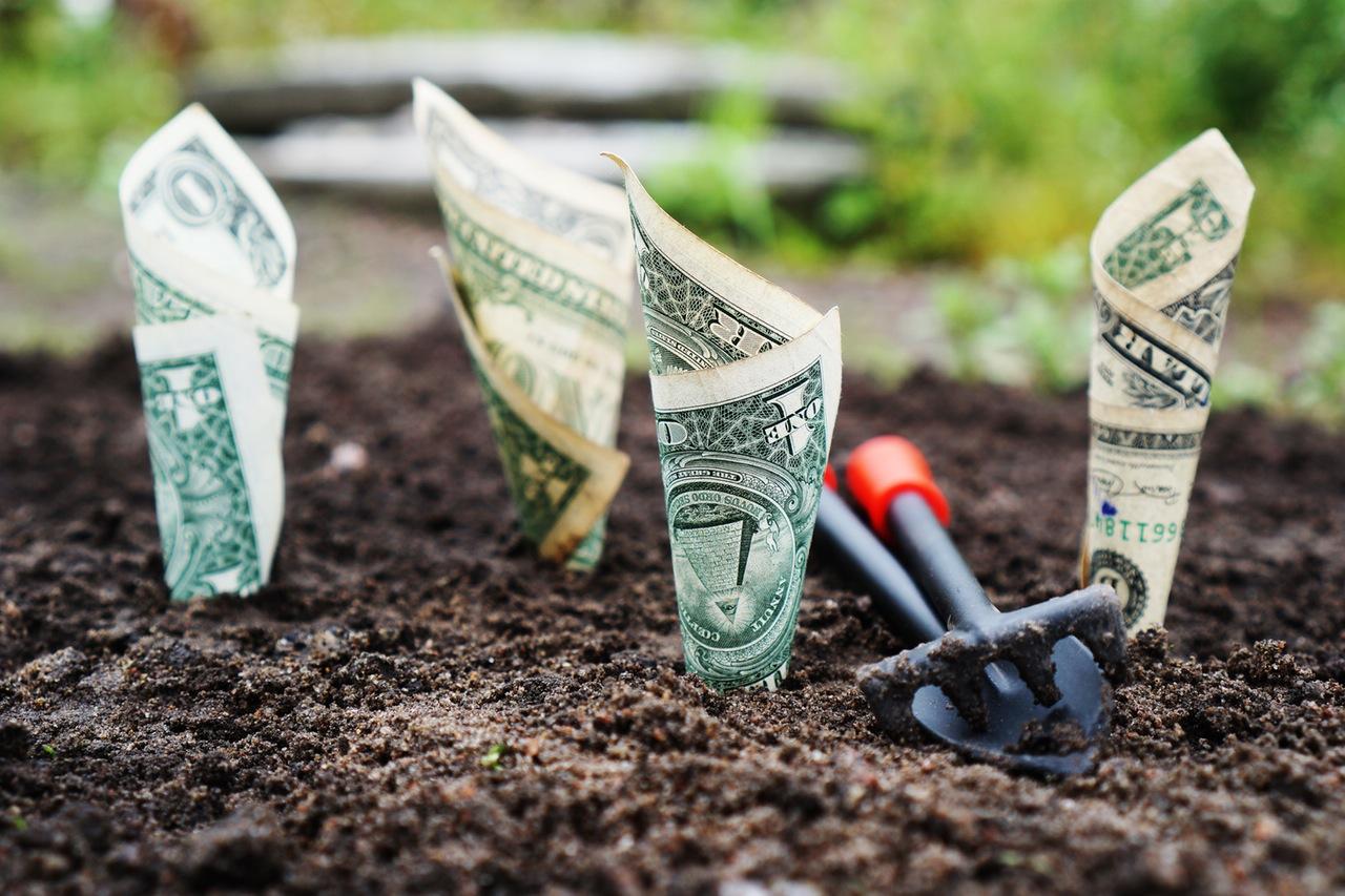 circular economy sharing economy